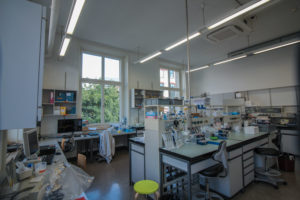 ETH-Labor neue Fenster